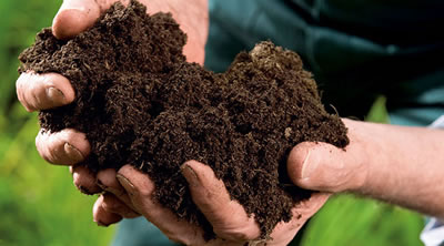 Potting soil for home and garden